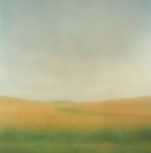Field in Rain